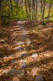 The Way Through The Woods. Looking down on a native stone path lit by dappled sunlight as it leads through Autumn woods in the Catskills Stock Images