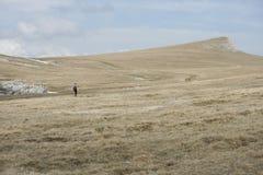 Wayfarer die op plateau wandelen Stock Foto