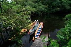 Wayki村庄:独木舟游览,达卡,加百利的小海湾, Roura,法属圭亚那 图库摄影