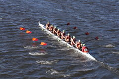 Wayland-Weston Crew races in the Head of Charles Regatta Men`s Youth Eight Stock Image
