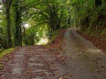 Waymark на вилке в грязной улице - Triacastela Camino стоковые изображения rf