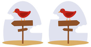 Waymark arrow (double). The bird sits on a road sign (double arrow Stock Image