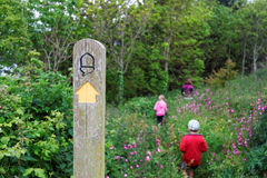Waymarked path and young family walking through flowers, Strete, Devon, UK Royalty Free Stock Photos