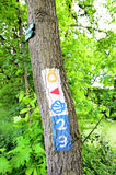 Waymarked signs. For hill walkers drawed on a tree Royalty Free Stock Photo