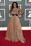 Wayna at the 51st Annual GRAMMY Awards. Staples Center, Los Angeles, CA. 02-08-09 Stock Images