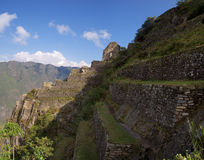Wayna Picchu ruins. Old Inca constructions, ruins, at Wayna Picchu mountain. Machu Picchu royalty free stock photos