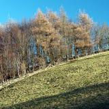 Wayrhamdale Yorkshire do leste Inglaterra Imagem de Stock Royalty Free