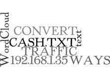 Ways To Convert Your Traffic Into Cash Word Cloud Royalty Free Stock Image