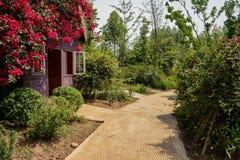 Wayside flower-covered cabin in verdant sunny summer Stock Image