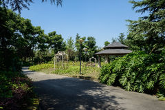 Wayside pavilion in woods of sunny summer Royalty Free Stock Photo