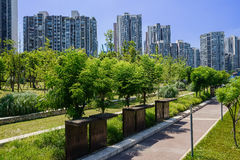 Wayside plants and trees in modern city on sunny summer day Stock Images