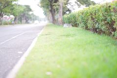 Wayside view of road in the morning stock images