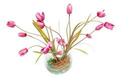 waza kwiat Zdjęcia Royalty Free