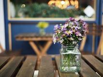 waza kwiat Obraz Royalty Free