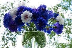Waza z cornflowers Zdjęcie Stock