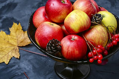 Waza z jesieni jabłkami Zdjęcia Royalty Free