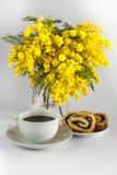 Waza z mimoz, filiżanki kawy i makowego ziarna strudlem na białym tle, Obraz Royalty Free