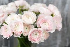 Waza z pięknym bukietem ranunculus kwitnie na drewnianym stole Nieociosany tło z kopii przestrzenią Zamyka w górę persa Obrazy Royalty Free