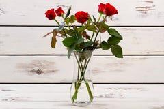 wazowe szklane czerwone róże Obraz Stock