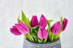 wazowi różowi bukietów tulipany kosmos kopii Fotografia Stock