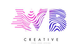 WB W B Zebra Lines Letter Logo Design with Magenta Colors Stock Images
