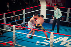 WBC EPBC拳击冠军在莫斯科 免版税图库摄影
