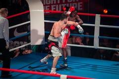 WBC EPBC拳击冠军在莫斯科 库存照片