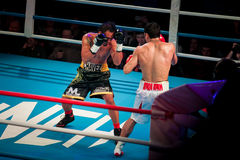 WBC EPBC boxing championship in Moscow. MOSCOW - 18 MARCH, 2016 : Professional boxing show Fight For The Future. Jheritz Chaves versus Vage Sarukhanyan (won) Stock Images