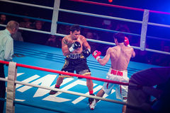 WBC EPBC boxing championship in Moscow. MOSCOW - 18 MARCH, 2016 : Professional boxing show Fight For The Future. Jheritz Chaves versus Vage Sarukhanyan (won) Stock Photos
