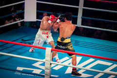 WBC EPBC boxing championship in Moscow. MOSCOW - 18 MARCH, 2016 : Professional boxing show Fight For The Future. Jheritz Chaves versus Vage Sarukhanyan (won) Royalty Free Stock Photo
