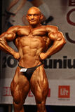WBPF bodybuilding European championship Stock Photos