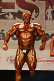 WBPF bodybuilding European championship Stock Images