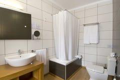 wc лотка зеркала цветов ванной комнаты холодный Стоковая Фотография RF