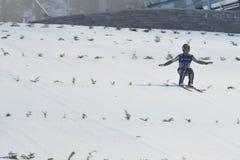 WC narciarski latający Vikersund 14 2015 Luty (Norwegia) Obraz Stock
