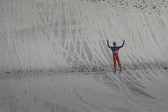 WC-Ski, der fliegt am 14. Februar 2015 Vikersund (Norwegen) (von der 2. Hälfte Stockbilder