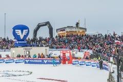 WC-ski die Vikersund (Noorwegen) vliegen 14 Februari 2015 Stock Afbeelding