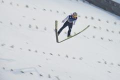 WC ski flying Vikersund (Norway) 14 February 2015 Stock Photography