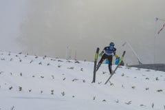 WC skidar flyga Vikersund (Norge) 14 Februari 2015 Royaltyfria Bilder