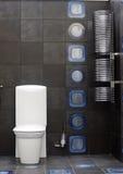 WC van het toilet Stock Foto's