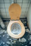 WC with wooden seat Royalty Free Stock Photo