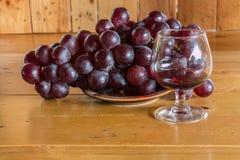 Wciąż życia czerwone wino i winogrona Fotografia Royalty Free