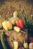 Wciąż życia warzywa, ziele i owoc, Zdjęcie Stock
