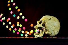 Wciąż życie biała ludzka czaszka na drewnianym stole z bokeh backgrou Obraz Royalty Free
