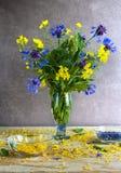Wciąż życie bukieta cornflowers gwałt Zdjęcia Stock