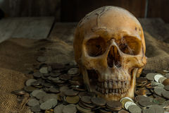 Wciąż życie czaszka Obraz Royalty Free
