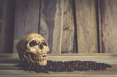 Wciąż życie czaszka i fasoli kawa na drewnianym tle Zdjęcie Royalty Free