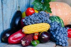 Wciąż życie kukurudza, winogrona, oberżyna, banie i pieprze na starym tle, Obrazy Stock