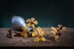 Wciąż życie kwiatu kosz Fotografia Royalty Free