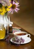 Wciąż życie od leczniczych ziele, miodu, ziołowej herbaty i medycyn, Fotografia Stock