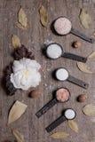 Wciąż życie pięć różnych typ sól obraz stock
